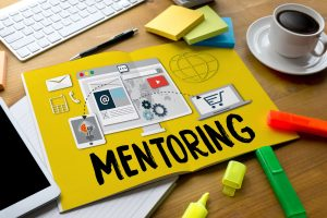how to work with a mentor