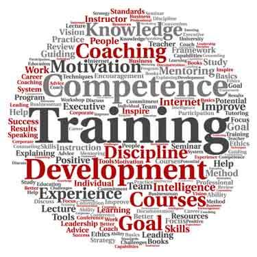 professional career coaching